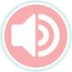 Audio & Visual Rentals